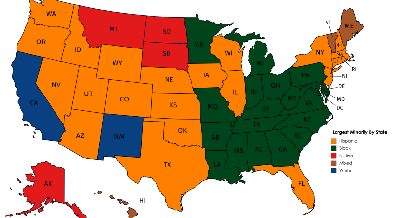 Largest Minority by State