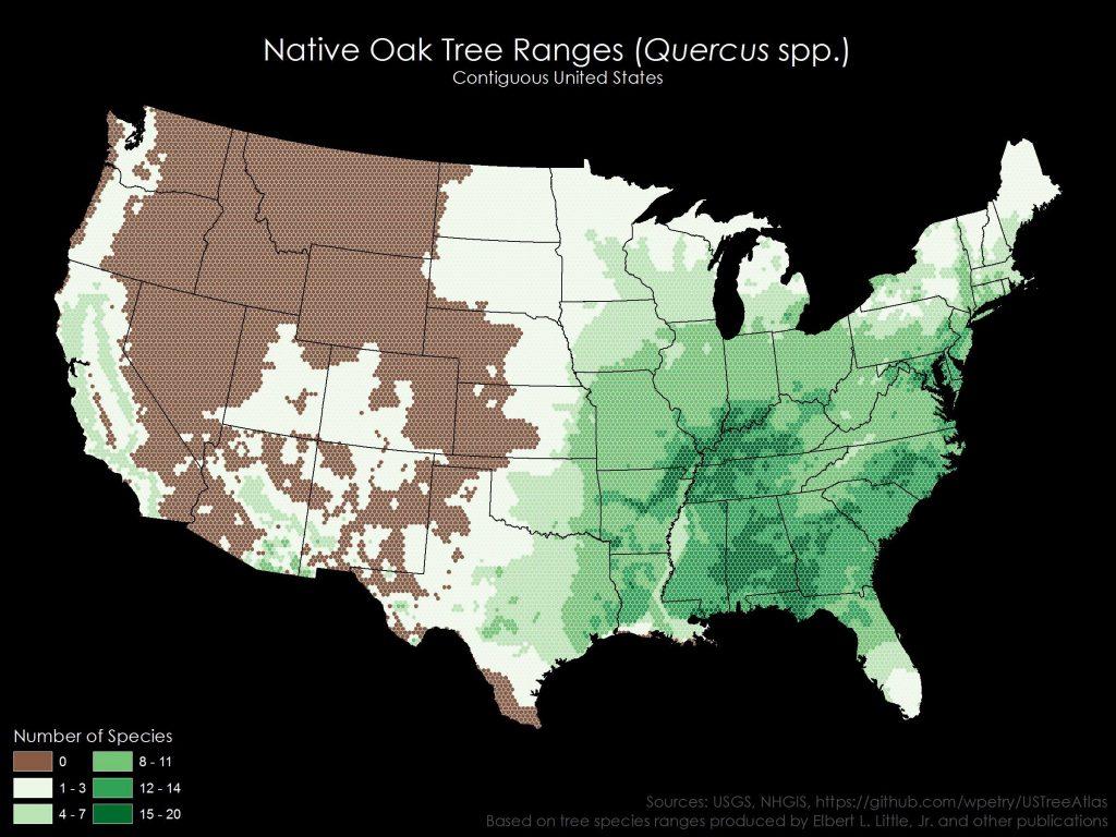 Native Oak Tree Ranges