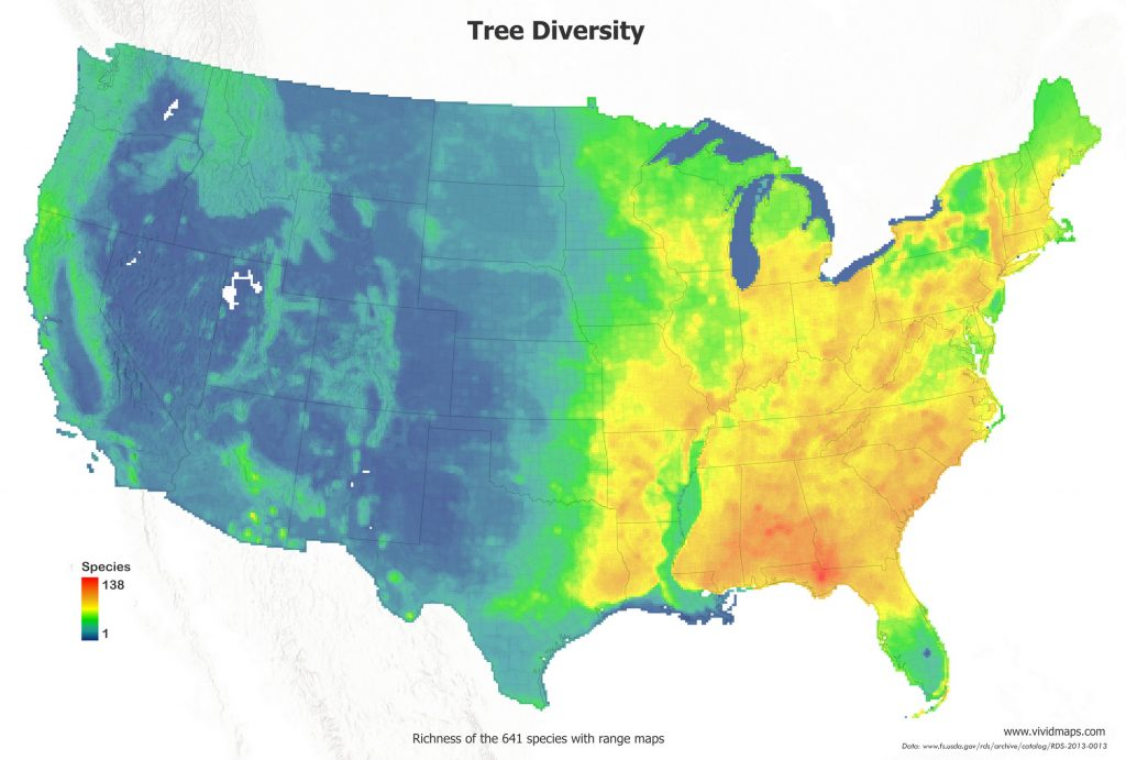 The atlas of tree diversity in the U.S.