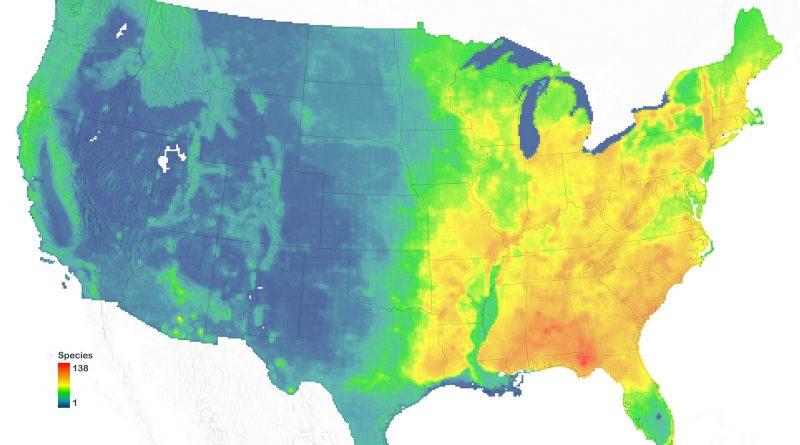 Atlas of American trees species