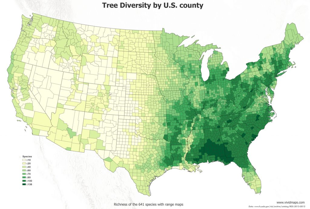 Map of the tree diversity by U.S. county
