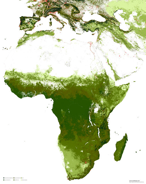 African vegetation plus cities