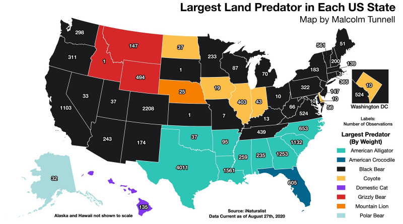 The map of the largest US predators