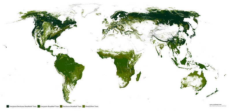 Map of world's forests