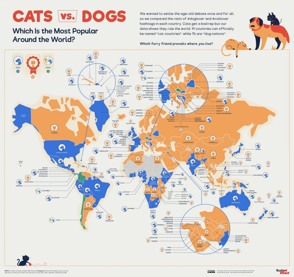 Cants Vs. Dogs: Which Is the Most Popular Around the World?