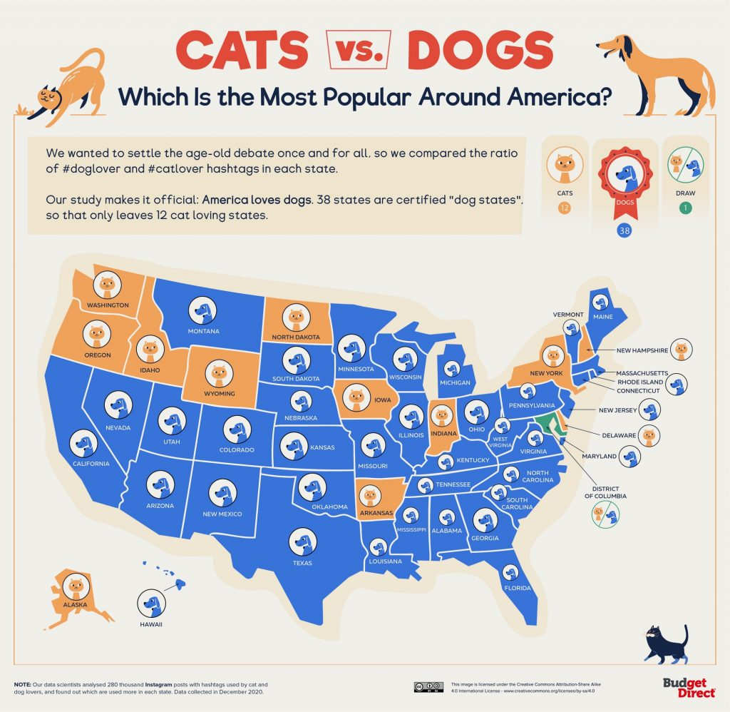 Cats Vs. Dogs: Which Is the Most Popular Around America?