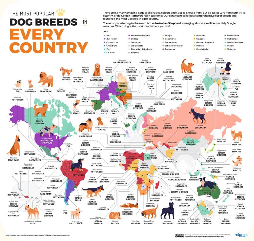 Map of the most popular dog breeds in every country