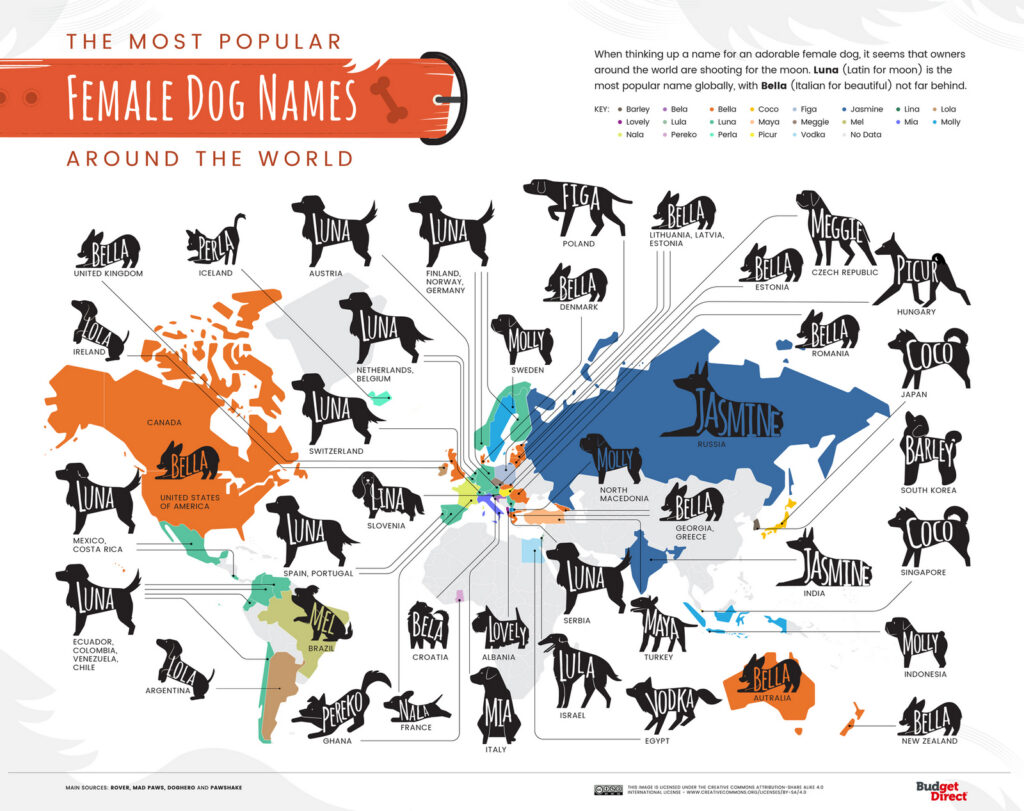 The world map of the most popular female dog names
