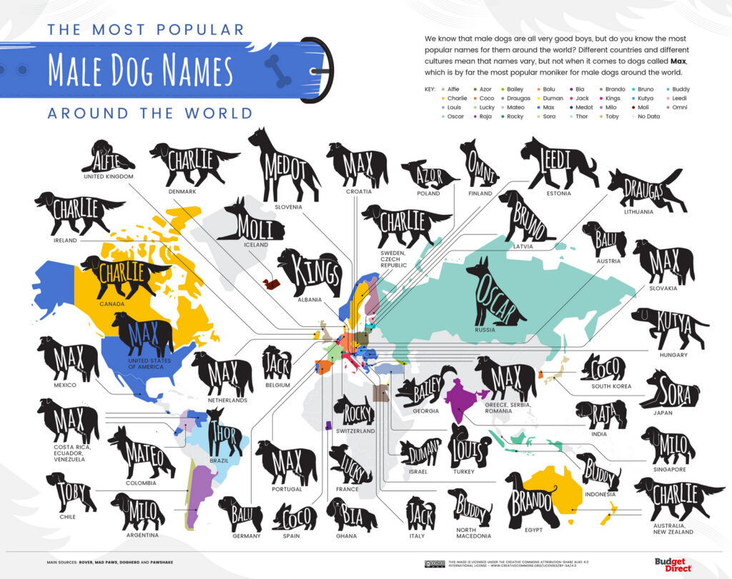 world map of the most popular male dog names